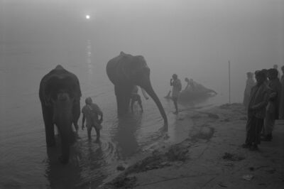 Don McCullin, 'The Elephant Festival, The River Gandak, India', 1991