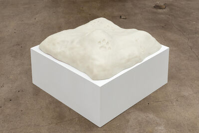 Stephanie Taylor, 'Interstellar Paw Print', 2014