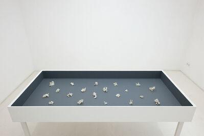 José María Sicilia, 'Winter Flower Fukushima', 2013