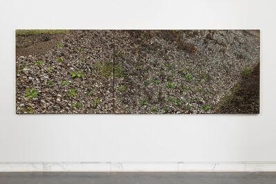 Oliver Westerbarkey, 'EntropiaPark/Hang', 2013/14