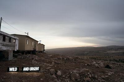 Shimon Attie, 'WILD AND URGENT (i)', 2014
