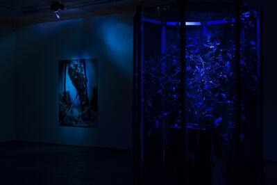 Hicham Berrada, 'Exhibition view Wentrup', 2015
