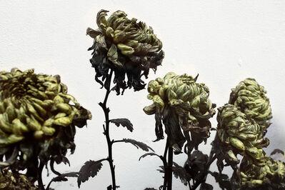 Jennifer Wen Ma 马文, 'In Furious Bloom II ', 2016