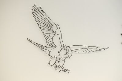 John Bisbee, 'Falcon', 2016