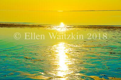 Ellen Waitzkin, 'Corn Hill Yellow Sunset'