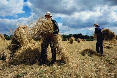 Justin Partyka, 'Harvest, Suffolk', 2007
