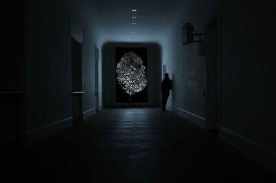 Youki Hirakawa, 'Frozen Leaf', 2012