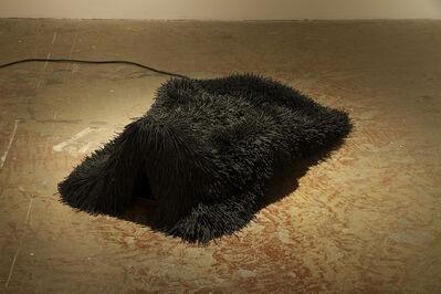Ingrid Bachmann, 'Pelt 5', 2012