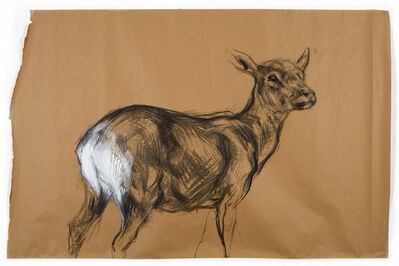 Nicola Hicks, 'Untitled (Deer 2) ', 2009