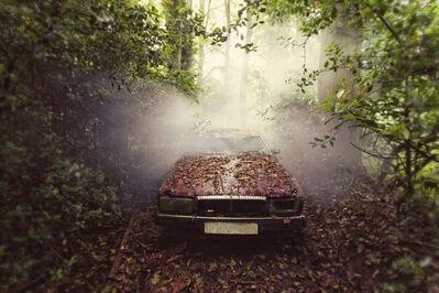 Gina Soden, 'Jaguar, Emergence series', 2012