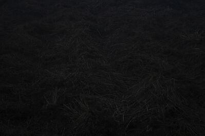Wang Hsiang Lin, 'Metamorphosis 09', 2014