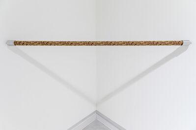 Aldo Grazzi, 'Singolare - Plurale', 2014