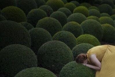 Maia Flore, 'Jardin Jaune', 2017