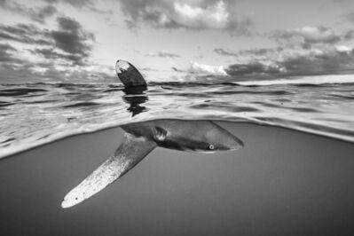 Cristina Mittermeier, 'What Lies Beneath', Unknown