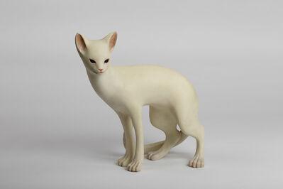 Yoshimasa Tsuchiya, 'Cat', 2016