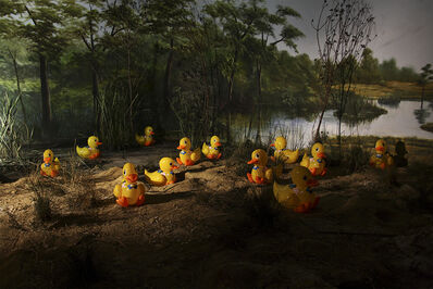Dulce Pinzon, 'Rubber Duckies', 2011-2012