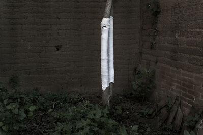 JULIO BARRITA, 'Árbol y venda ', 2012
