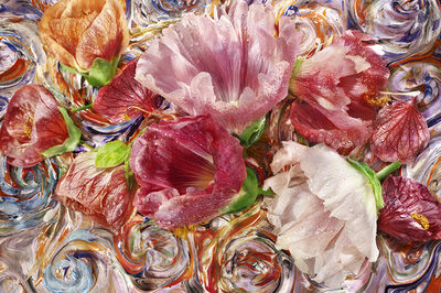David Bishop, 'Hollyhock.2', 2016