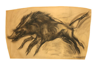 Nicola Hicks, 'Wild boar'