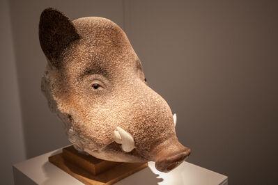Jean-Marie Fiori, 'Wild Boar's Head', 2003