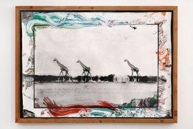 Peter Beard, 'Giraffes in Mirage on the Taru Desert, Kenya', 1960