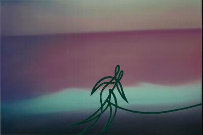 Stefano Perrone, 'Una corsetta, in riva al mare, da casa', 2020