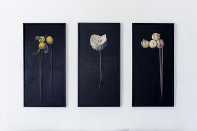 Marina Núñez, 'Untitled (Siniestro), Triptych', 1992