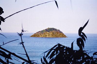 Denise Milan, 'Ilha Brasilis II', 2013