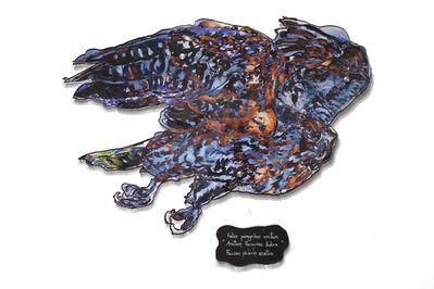 Dominique Paul, 'Anatum Peregrine Falcon', 2020