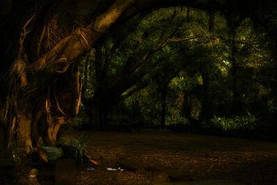 Albano Afonso, 'da série Cristalização da Paisagem, Jardim da Luz', 2018