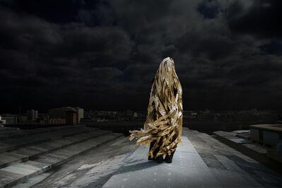 Corinne Mercadier, 'La chevelure de  Bérénice', 2013