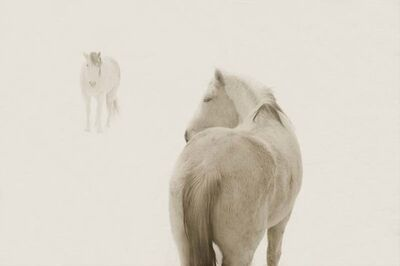 Jack Spencer, 'Snow Ponies #2, Truchas, NM', 2006