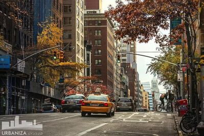 Den Marino, 'NYC Fall'