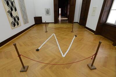 Ioana Nemes, 'Z (rope)', 2009