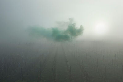 Isabelle & Alexis, 'Eperney - Mystic jade cloud in the myst of Eperney', 2014