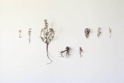 Ella Littwitz, 'The Forerunner', 2020