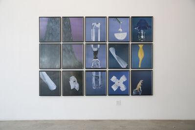 Maria Magdalena Campos-Pons, 'The Herbalist Tools', 2004