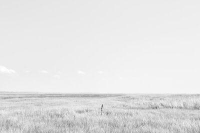 Eric Pillot, 'Horizons  9426', 2014