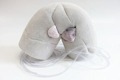 Julia Colavita, 'Insulation (quartz eyes) ', 2016