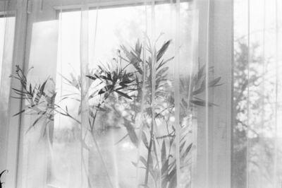 Natalia Poniatowska, 'Longing For Belonging', 2015