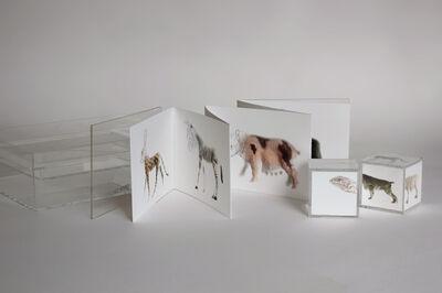 Miguel Ángel Fúnez, 'Gene targeting_Libro', 2012