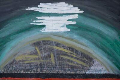 Diego Salvador Ríos, '...las montañas también lloran ó sobre como una montaña nace, crece, se reproduce y muere', 2016-2017