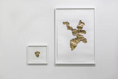 Santiago Reyes Villaveces, 'Fiebre del oro serie', 2019
