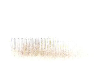 Myra Hafetz, 'White Fence'