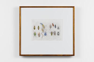 John Wolseley, '101 Insect Life Stories No 40. Coleoptera', 2017