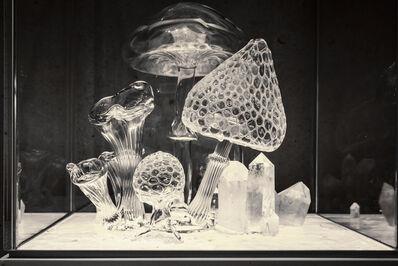 Melli Ink, 'Untitled (Pilze)', 2021