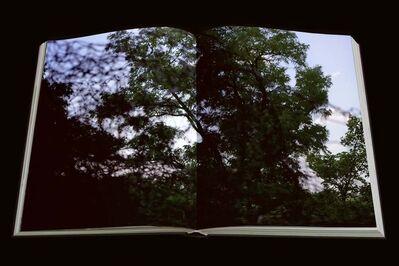 Alicja Karska & Aleksandra Went, 'From the Cycle', 2008-2009