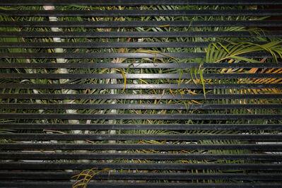 Uriel Orlow, 'Bounds (#1)', 2015