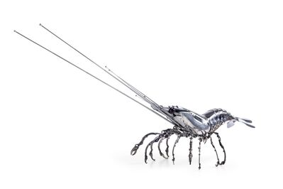 Edouard Martinet, 'Shrimp , Crevette', 2016