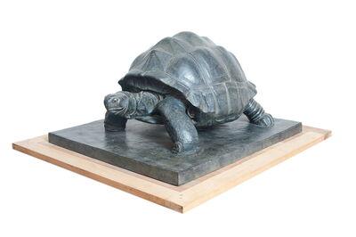 Patrick Bintz, 'Turtle'
